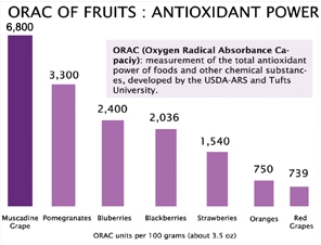 orac of muscadine grapes